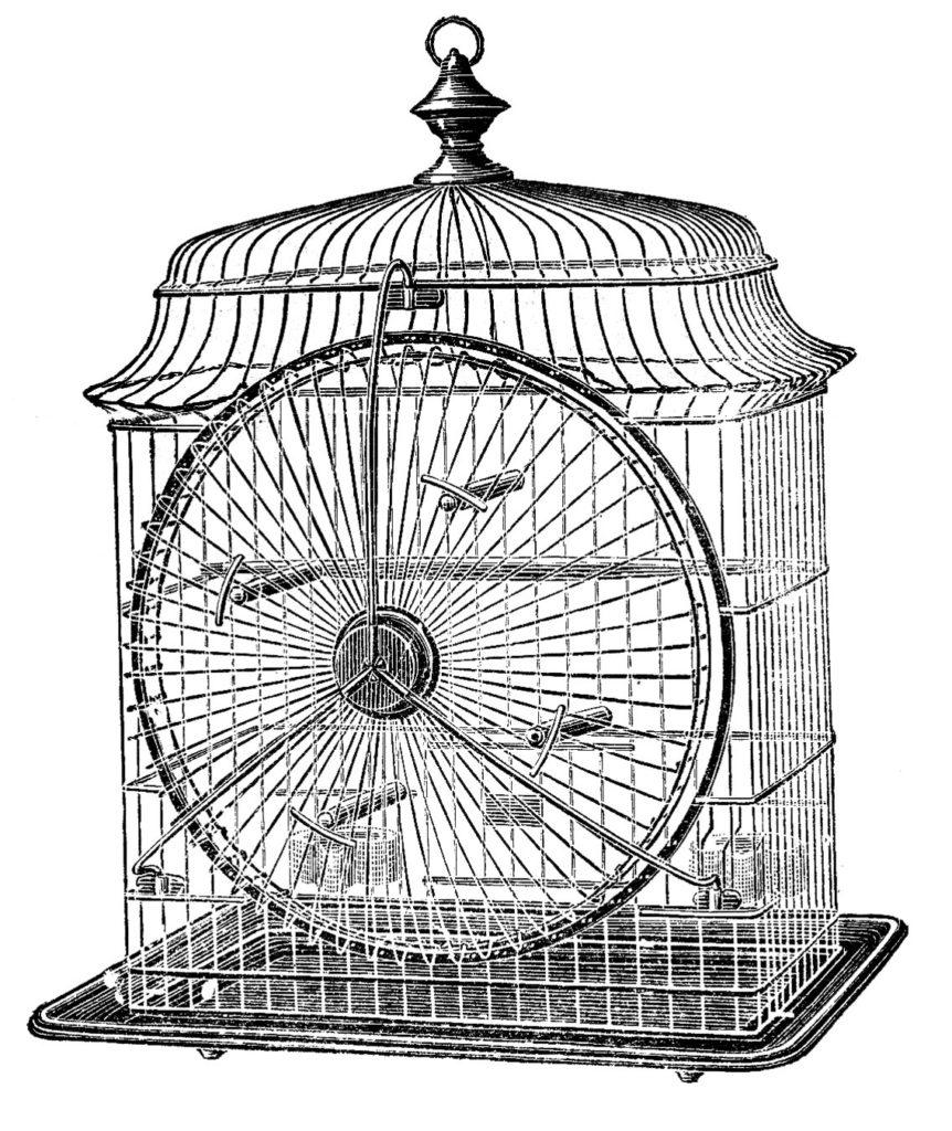 Vintage Bird Cage Clip Art