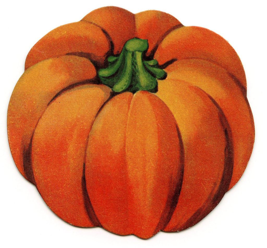 orange pumpkin illustration