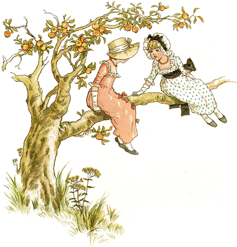 children climbing apple tree image