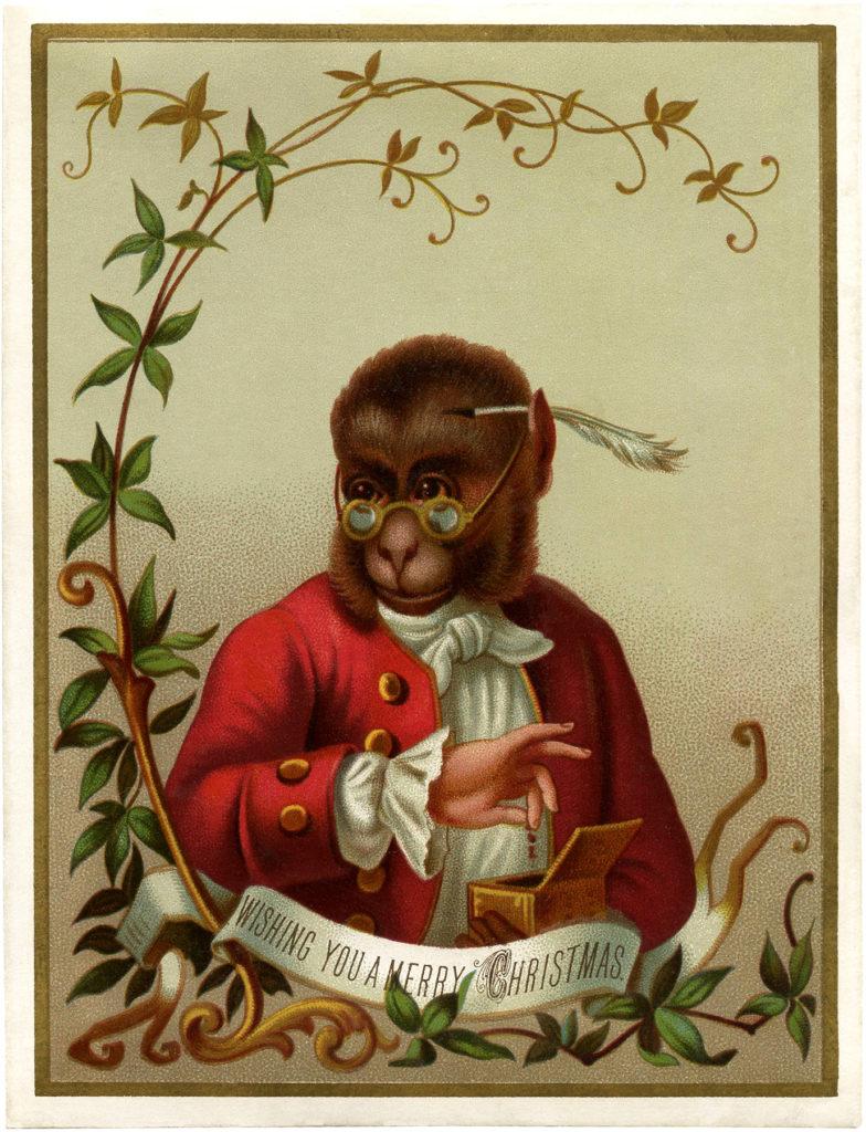monkey clothes red coat image