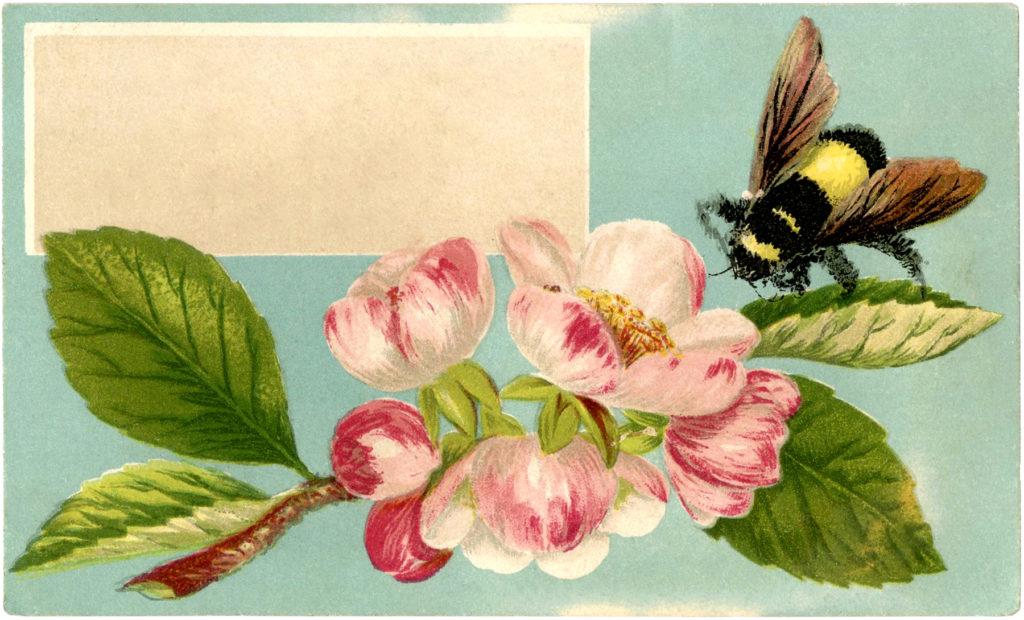 bumblebee label flower image