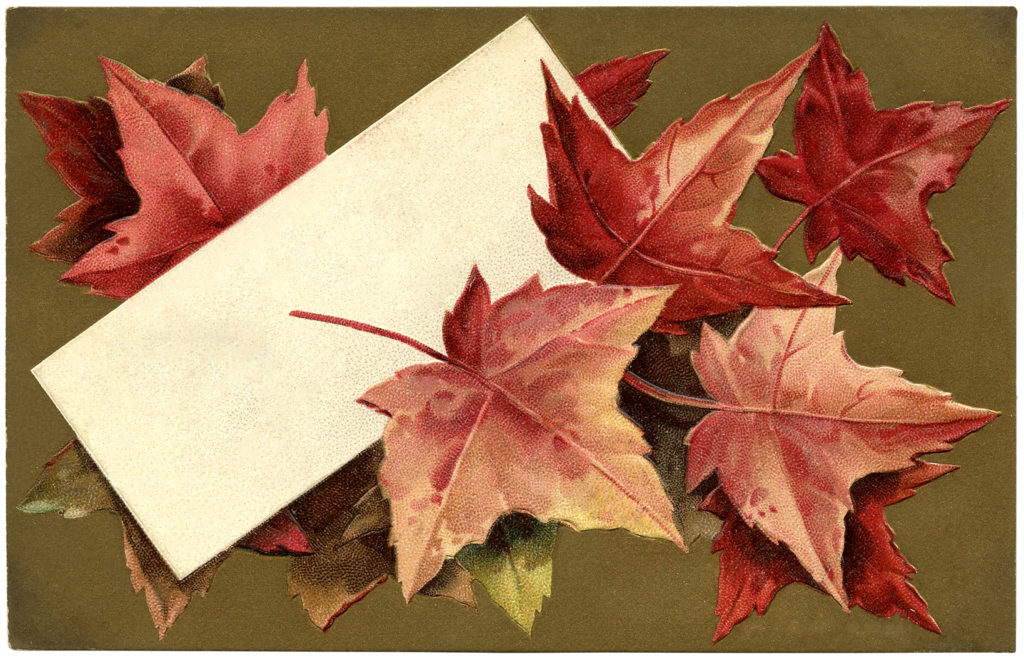 fall leaves label card image