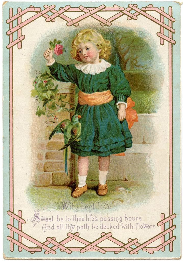 vintage girl parrot image
