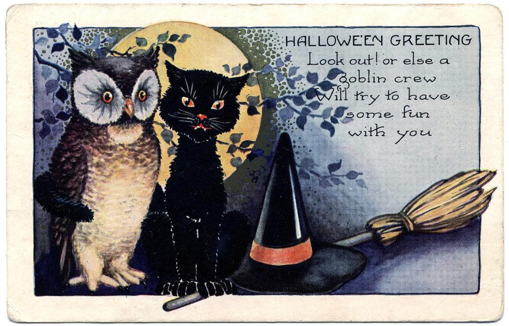 halloween owl cat vintage image