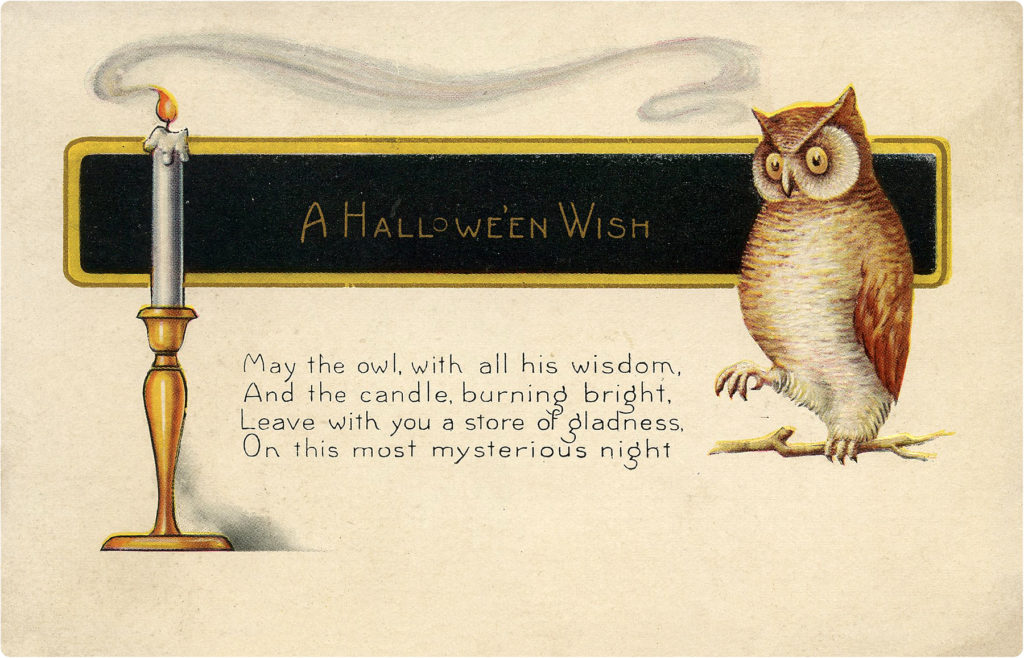 Halloween Owl with Candle Image
