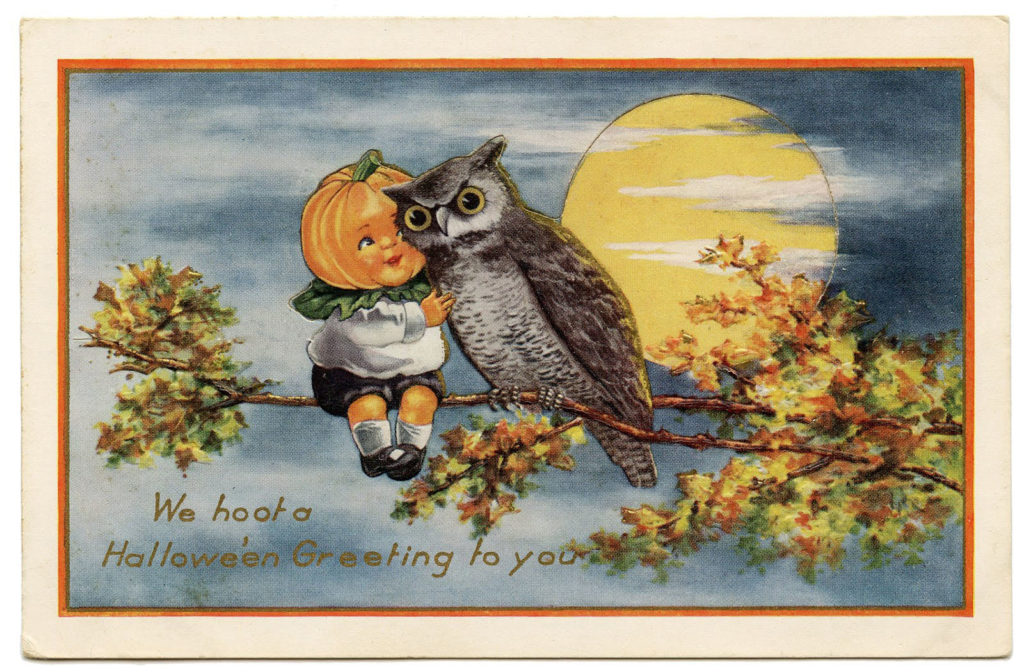 halloween pumpkin head owl moon illustration