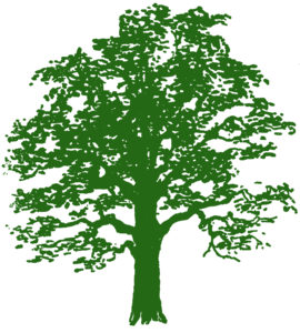 Green Oak Tree Silhouette