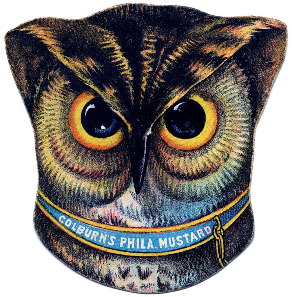 Owl Head Vintage Image