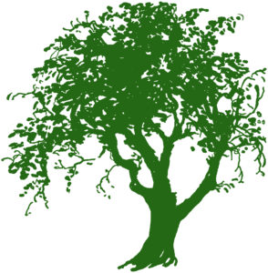 Green Tree Silhouette