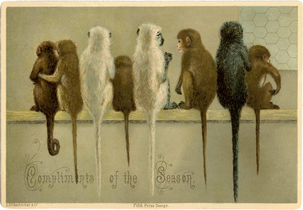 monkeys christmas vintage image