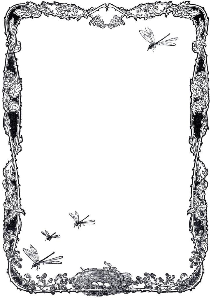 vintage garden dragonfly frame image