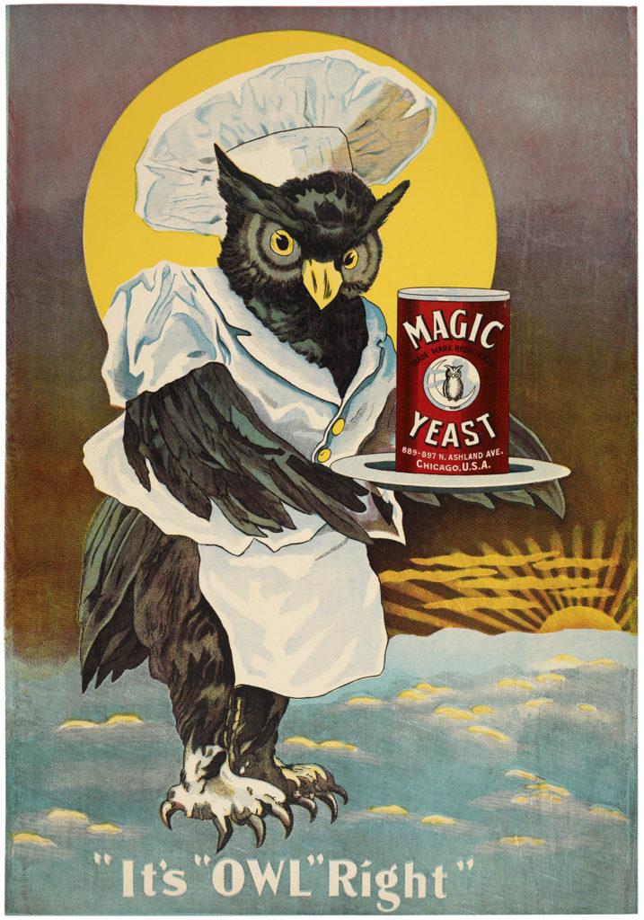 vintage owl ad chef image