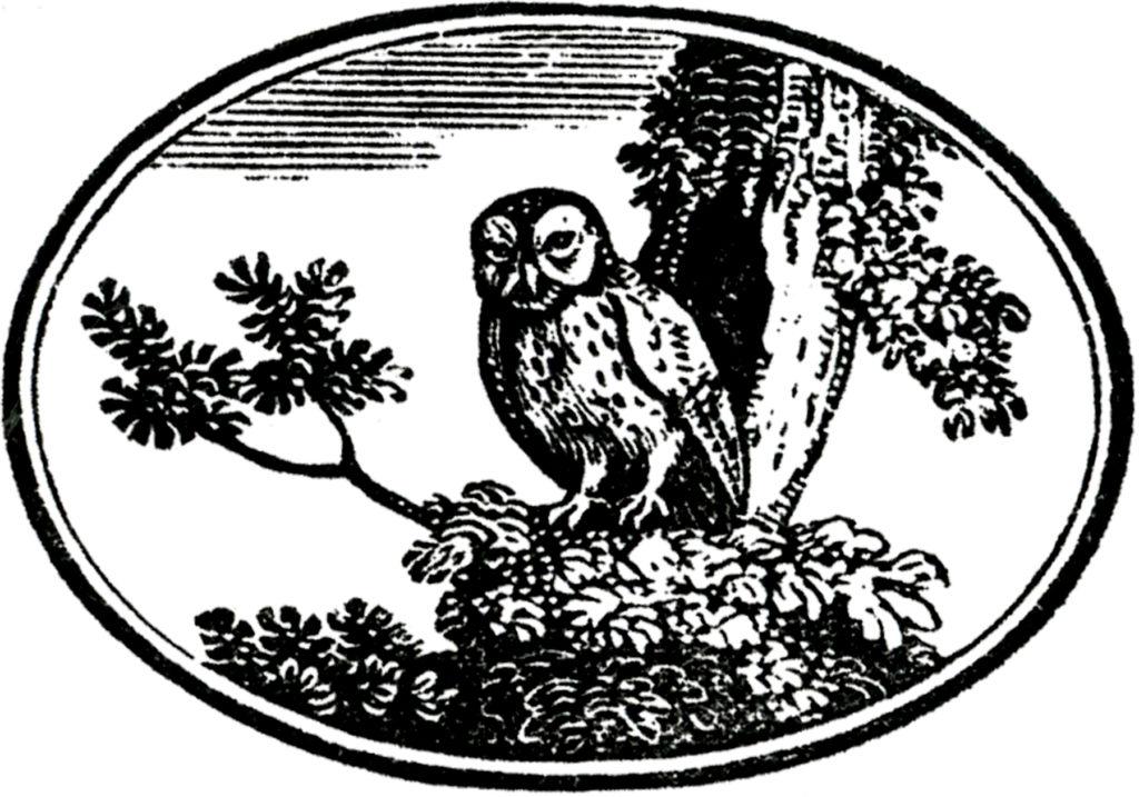 vintage owl label clipart