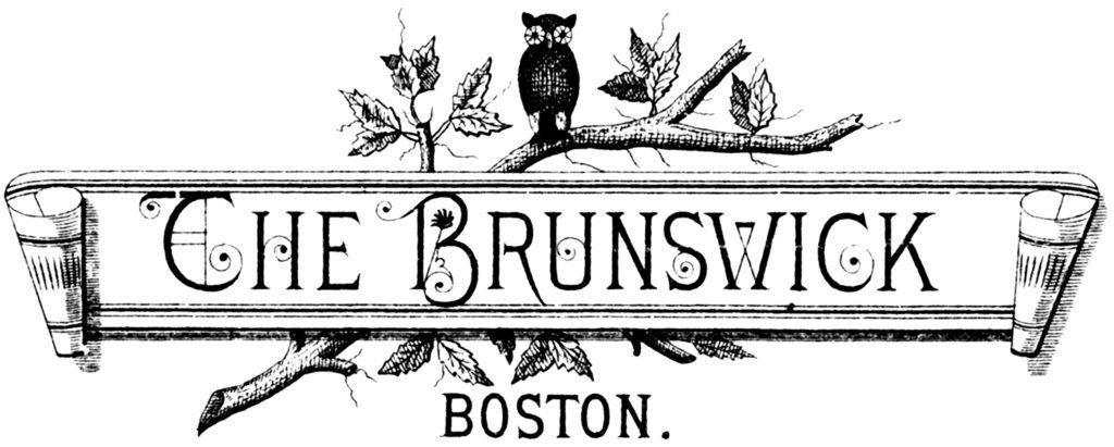 vintage owl typography label illustration