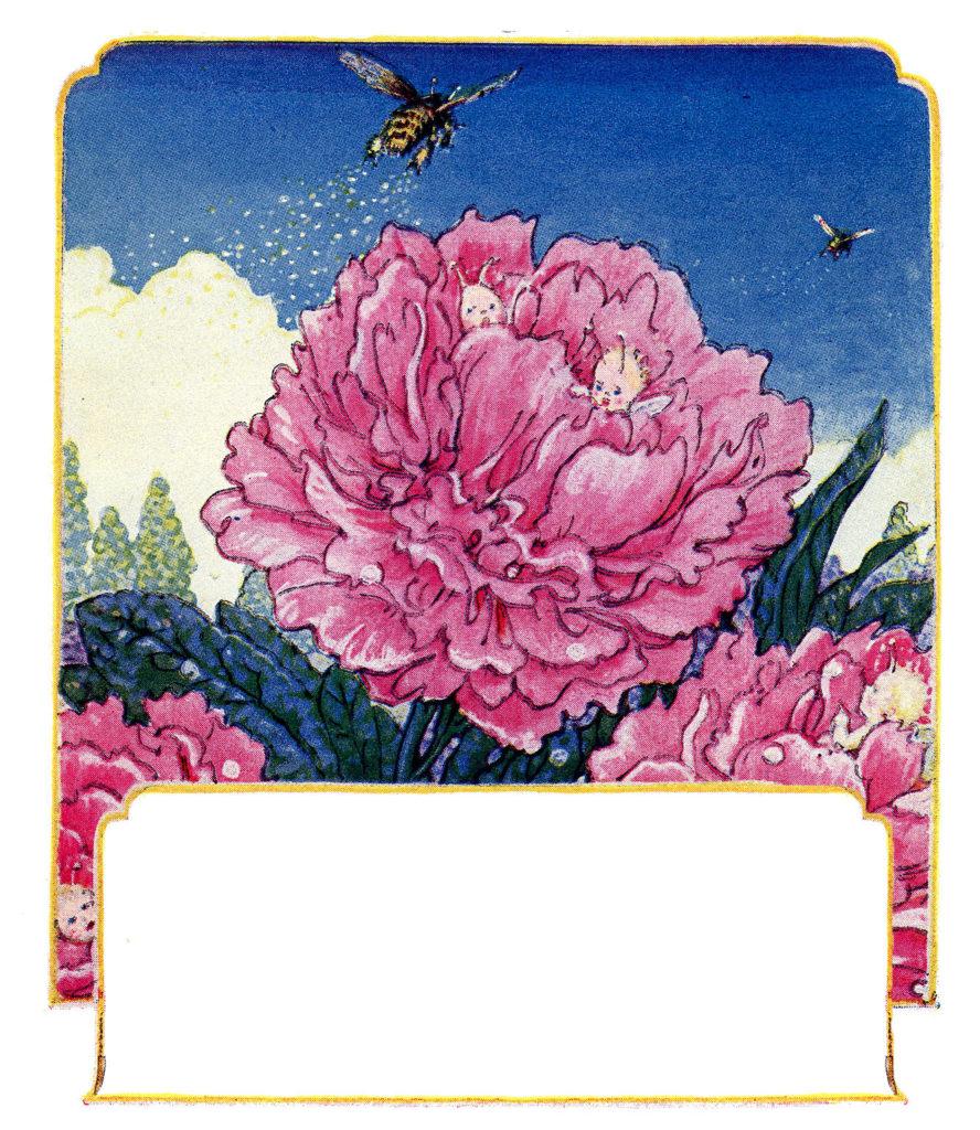 pink flower bee fairies illustration