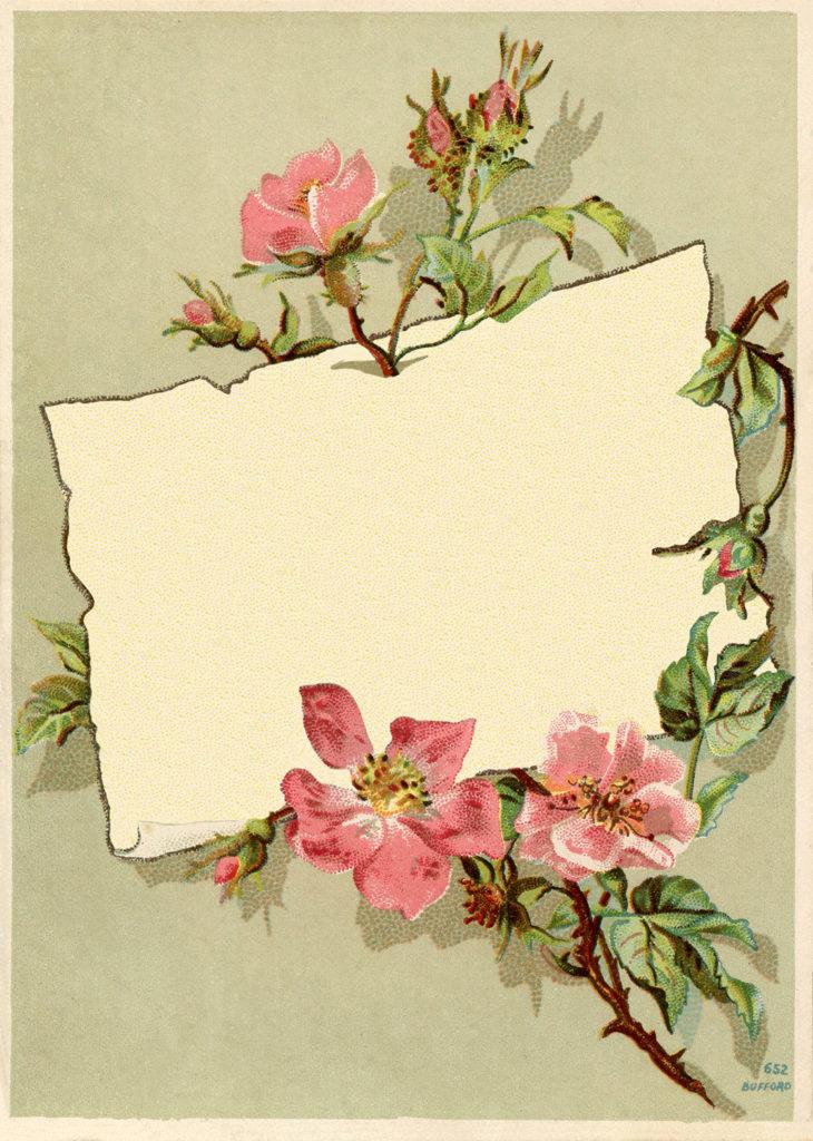 vintage rose frame card image