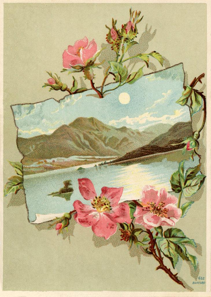 vintage rose frame landscape moon image