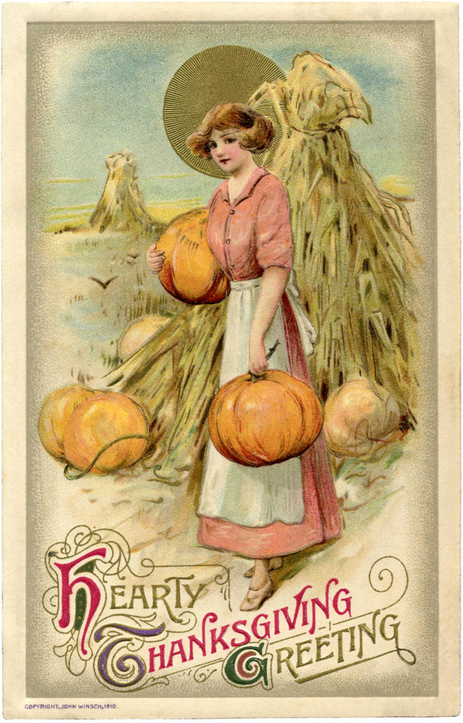 lady pumpkins cornstalks thanksgiving image