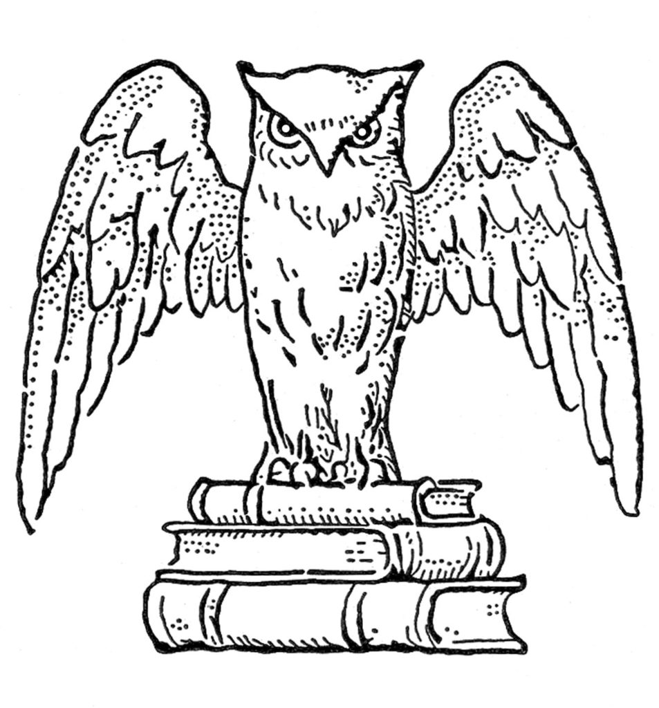 Owl with Books Image