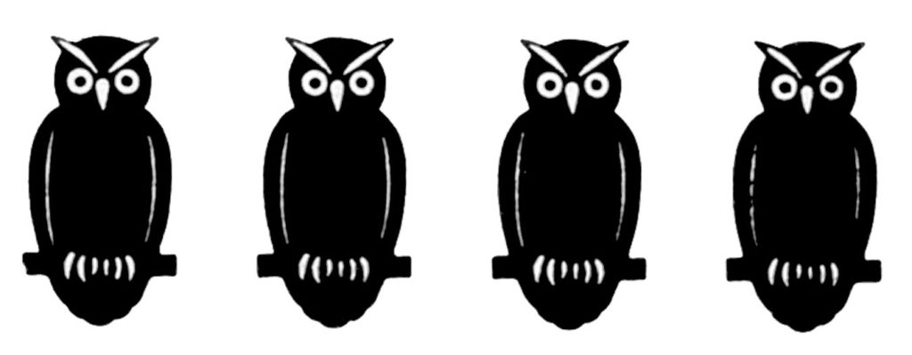 halloween owls black white image