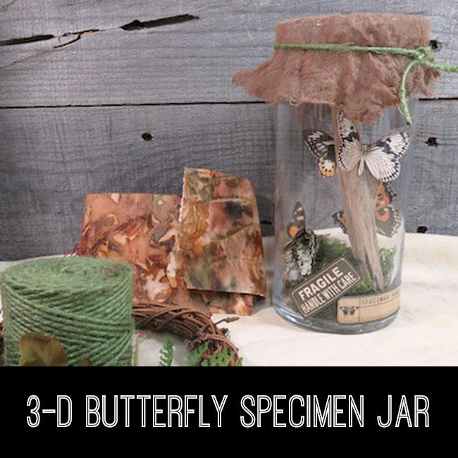 3-D Butterfly Specimen Jar