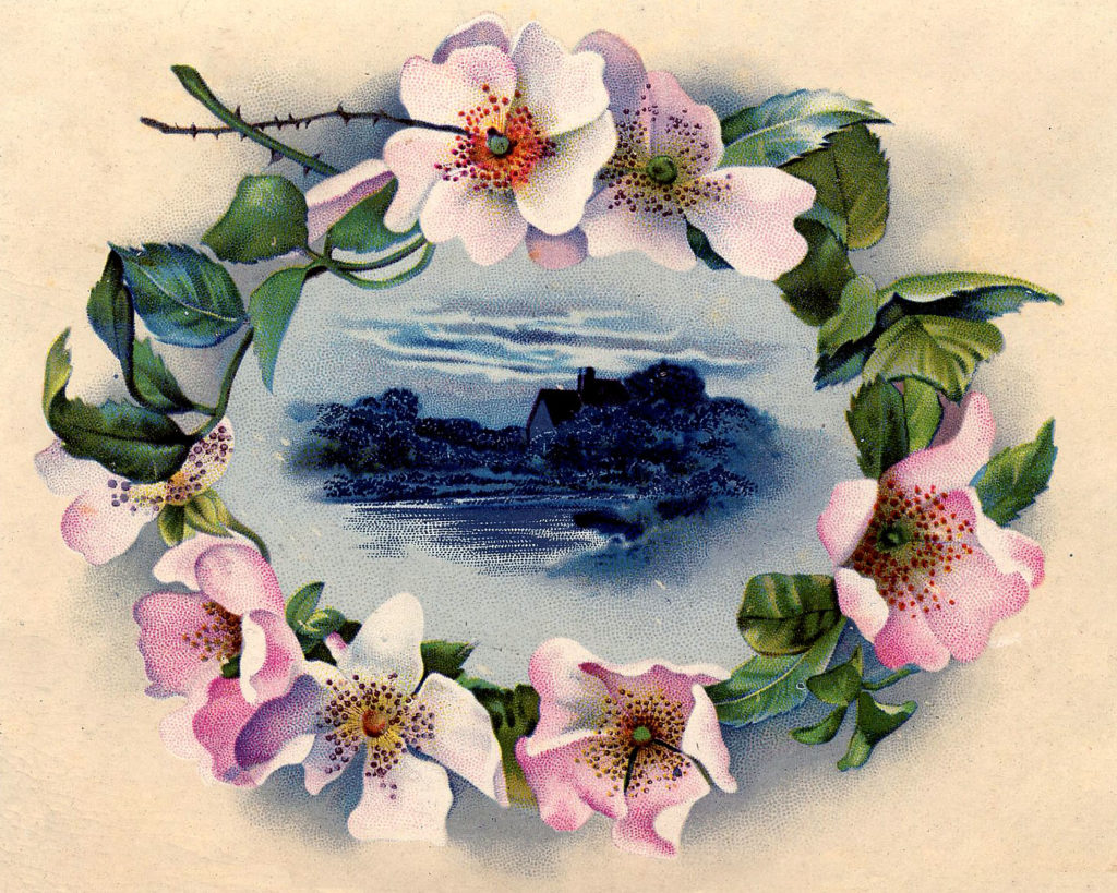 wild rose frame landscape illustration