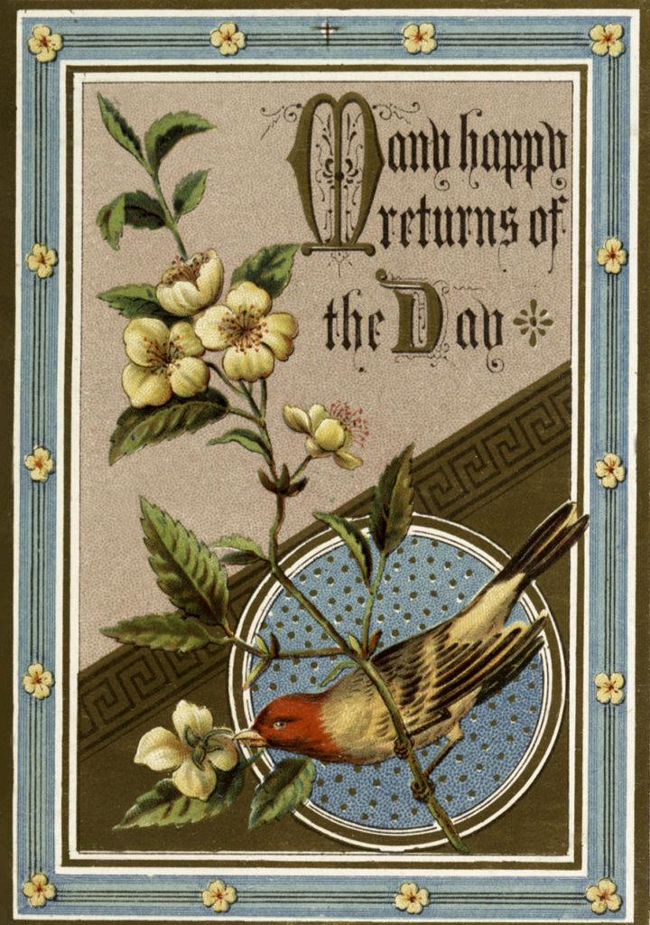 Vintage Bird Flowers Birthday Greeting Illustration