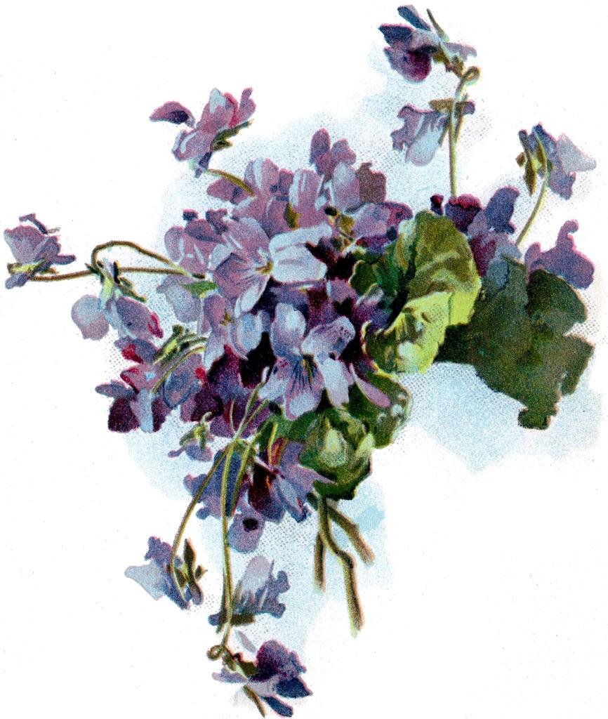 Vintage Violets Bouquet Clip Art