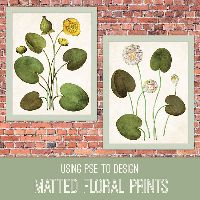 PSE Tutorial Using PSE to Design Matted Floral Prints