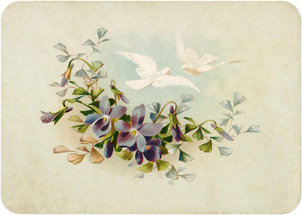 Vintage Violets Birds Sky Image