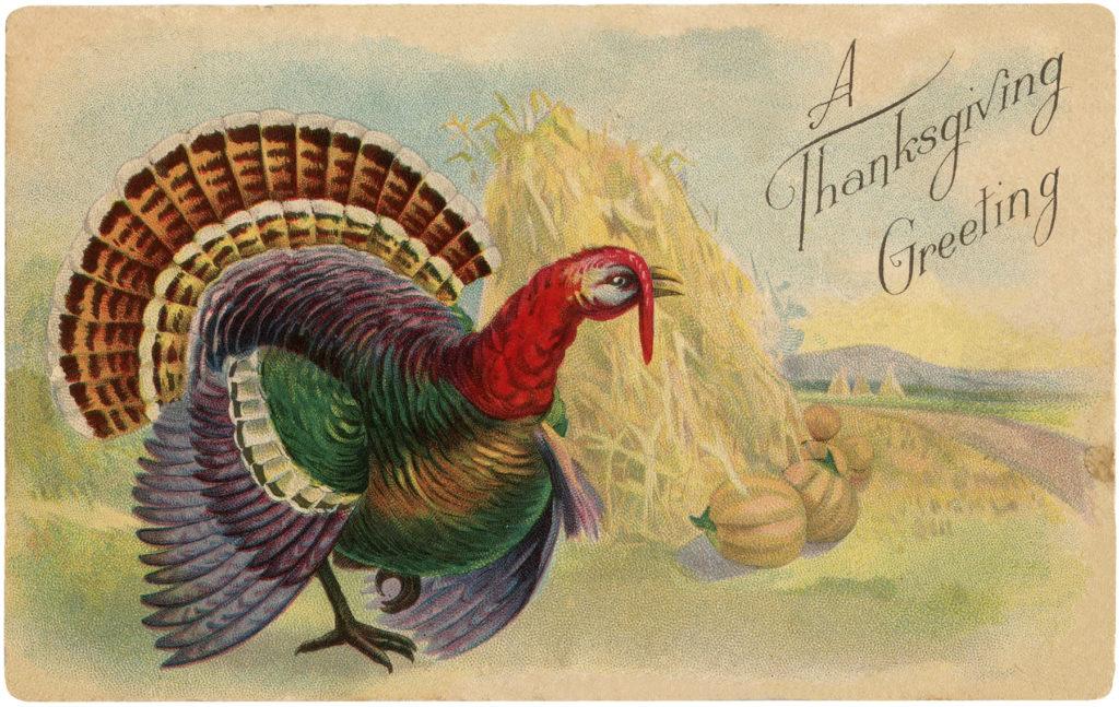 Vintage Turkey Haystack Pumpkins Image