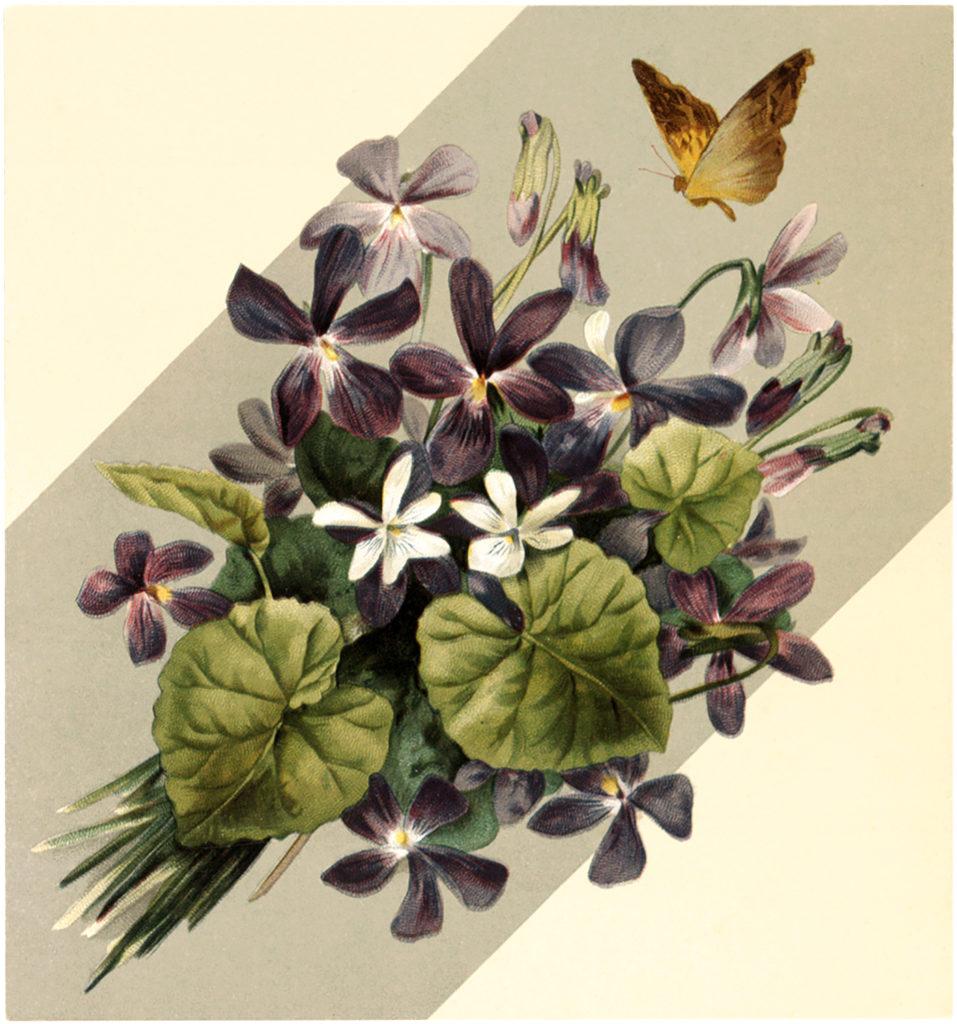 Vintage Violet Bouquet Butterfly Image