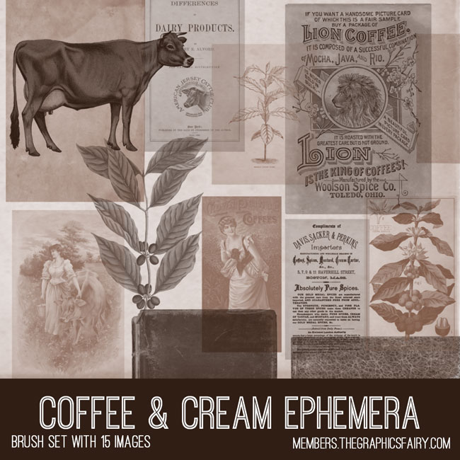 vintage coffee & cream ephemera brush set