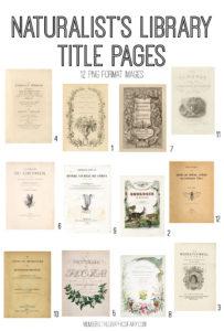 vintage naturalists library digital image bundle