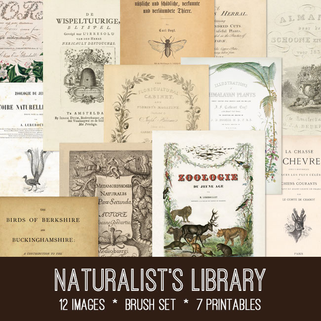naturalists library vintage images
