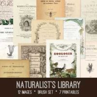 vintage naturalist library bundle
