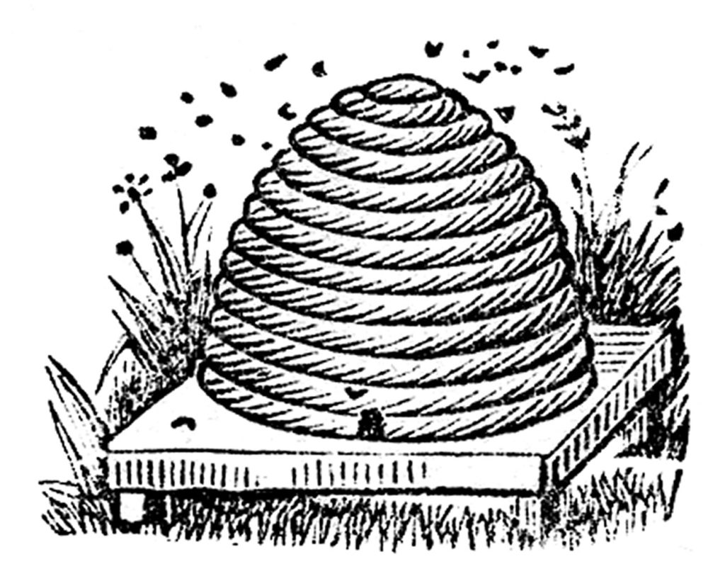 beehive bees beeskep image