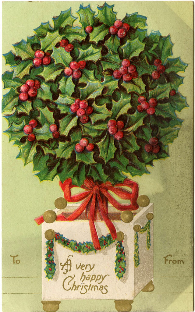 Christmas Holly Topiary Image
