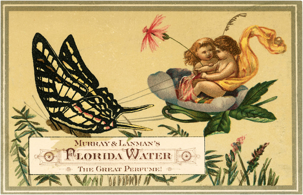 Fairies Butterfly Vintage Illustration