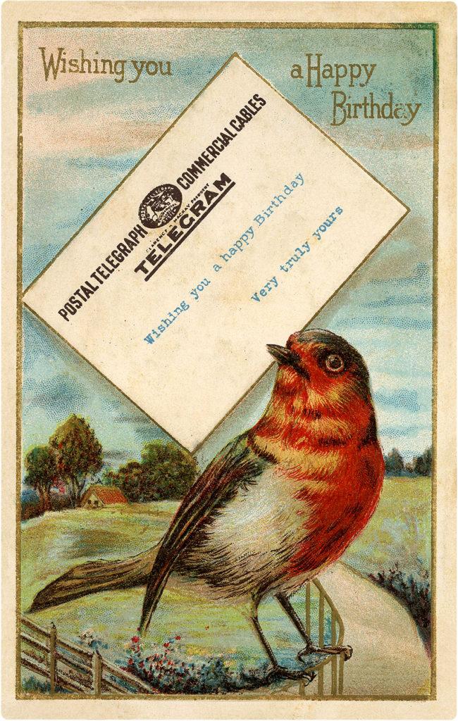 Happy Birthday Bird Image Robin