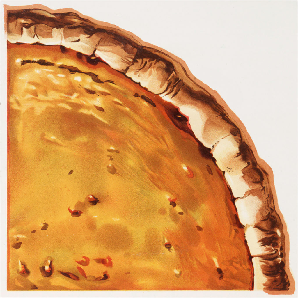 Vintage retro pumpkin pie image