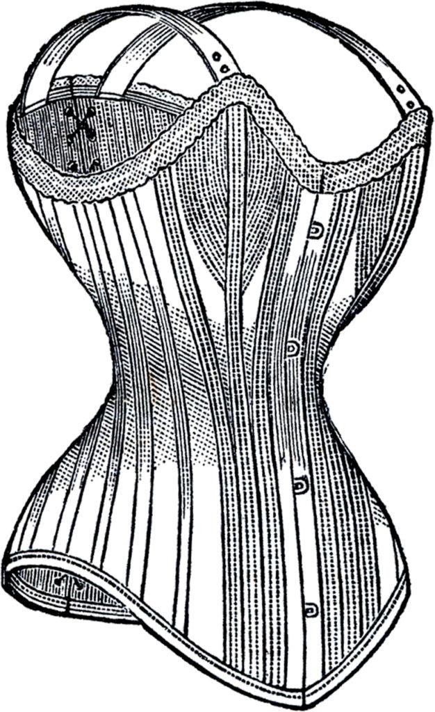 vintage ladies corset clipart