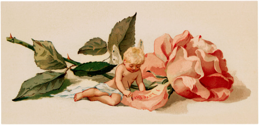 Vintage Rose Fairy Illustration
