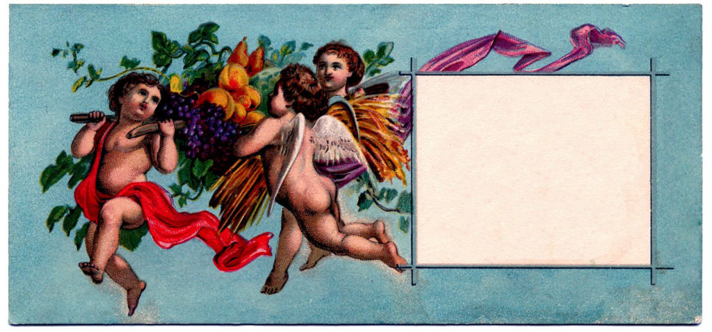 cherubs fruit blank tag image