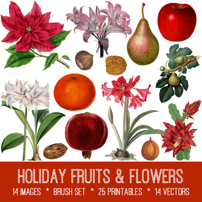 holiday fruits & flowers vintage images
