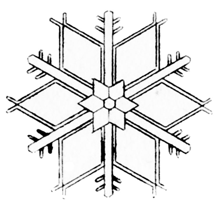 pretty snow flake image