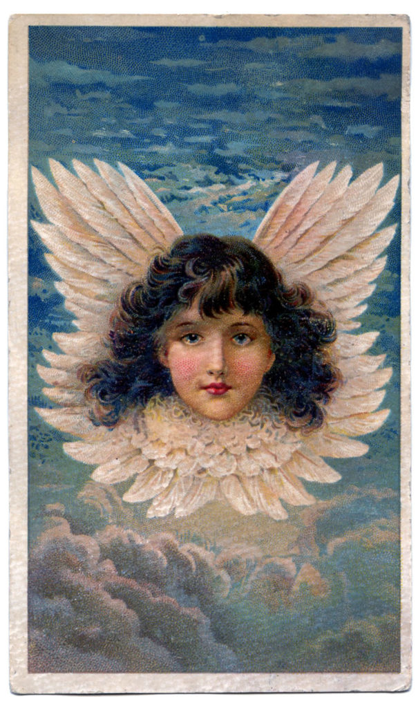 angel vintage wings clouds feathers illustration