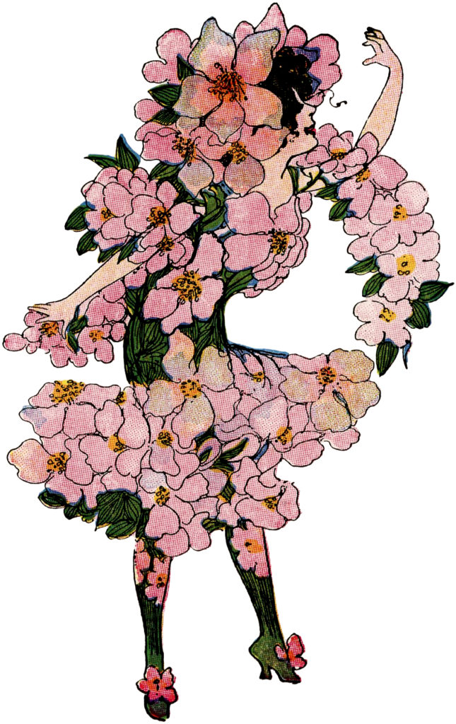 flower fairy pink blossoms image