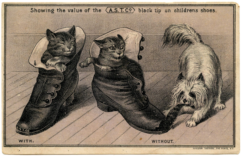 cats dog shoes vintage image