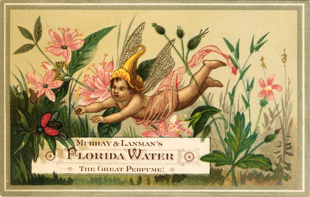 fairy Florida water advertising vintage typography image